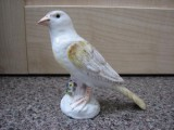 Meissen Bird after Restoration and repair