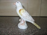 Meissen Bird before Restoration and repair